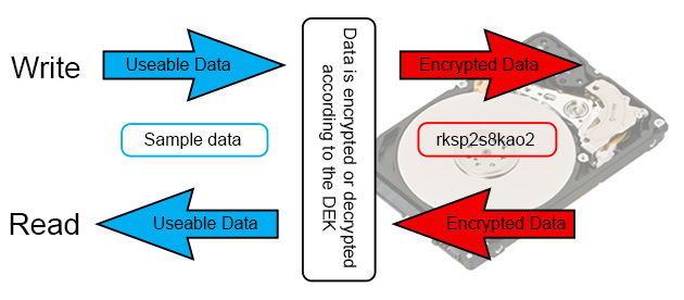 Self-Encrypting Drives: A Brief Introduction and Step by