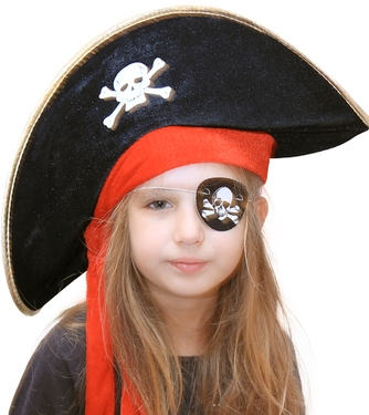 piracy, police, copyright, the pirate bay, ciapc, found