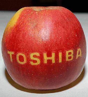 toshiba, laptop, ultrabook