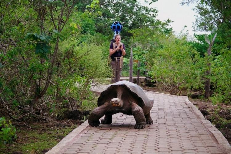 google galapagos islands street view