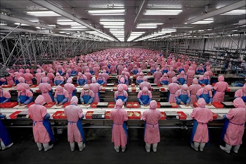google, foxconn, manufacturing, factories, robotics