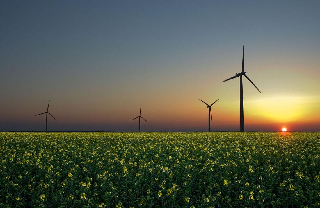 greenpeace, green energy