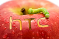 HTC loses to Apple, several Android phones banned in the U.S.