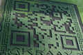 QR code is largest on record, Minecraftian feat spans 7 acres of corn