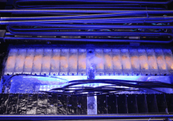Intel and SGI trial submerging servers in liquid to cool them