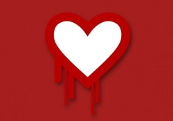 Canadian law enforcement officials make first Heartbleed-related arrest