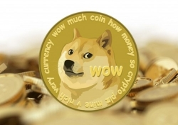 DogeVault wallet falls victim to cyber attack, millions of Dogecoins believed to be missing