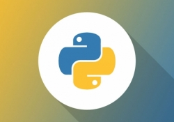Python tops Java as most popular introductory teaching language among US universities