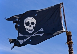 Google algorithm change has killed search traffic to pirate sites