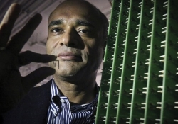 Aereo waves the white flag, files for bankruptcy