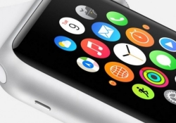 Apple Watch stuck in limbo as developers wait for wider adoption