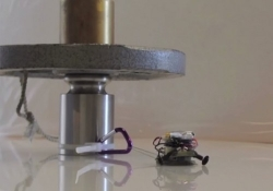 These tiny robots can pull items 2,000 times their own weight