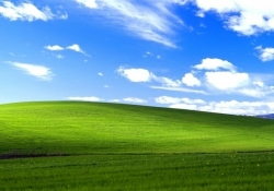 Microsoft paid millions by U.S. Navy to keep supporting Windows XP
